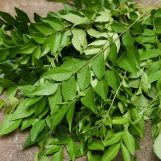 CURRY LEAVES PACK 25 gm